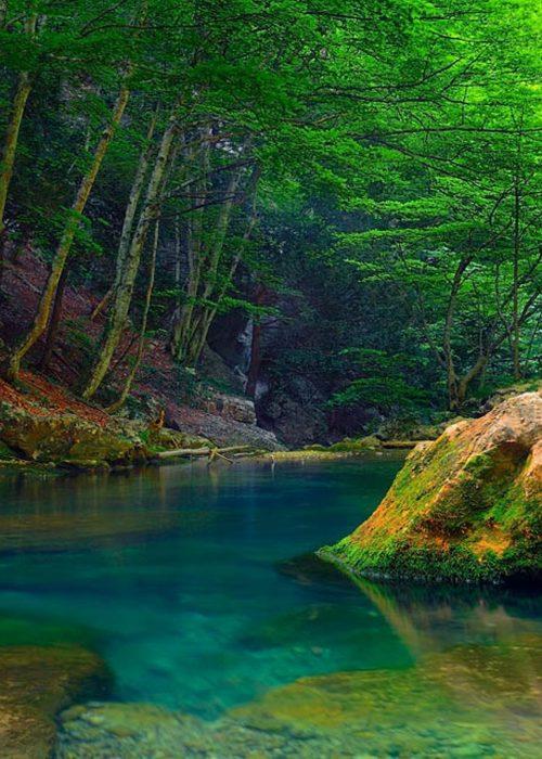 Nature-mountain-river-green-trees-green-wallpaper-hd